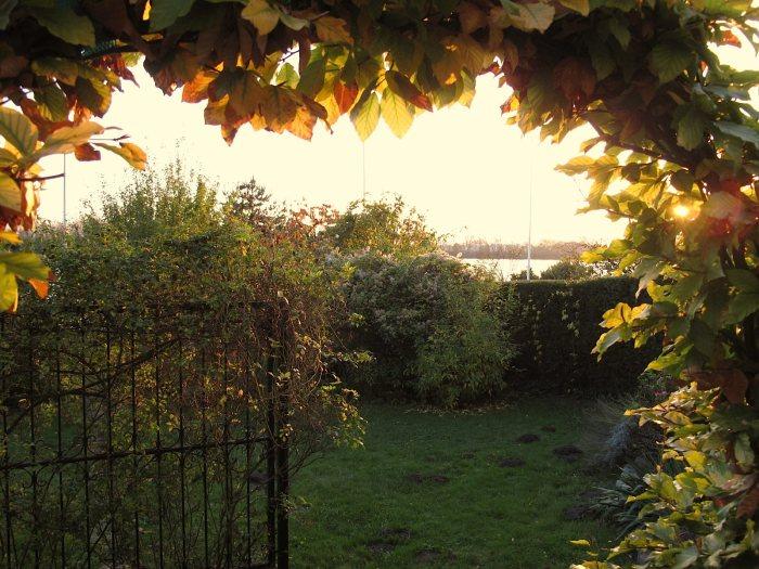 autumn_0432
