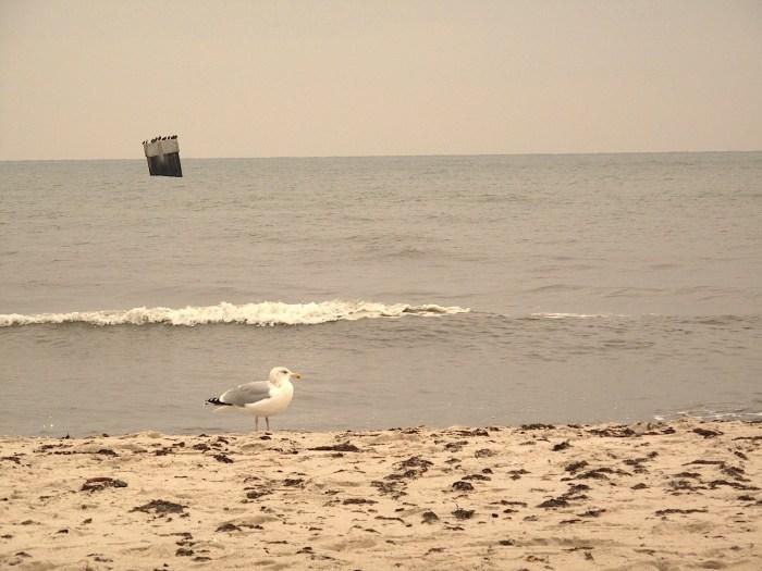 Strand Darßer Ort