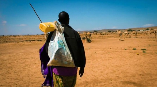Land degradation and migration: Will restoring the land keep people at home?