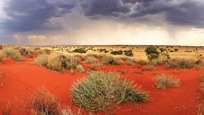 Australia to ax support for long-term ecology sites