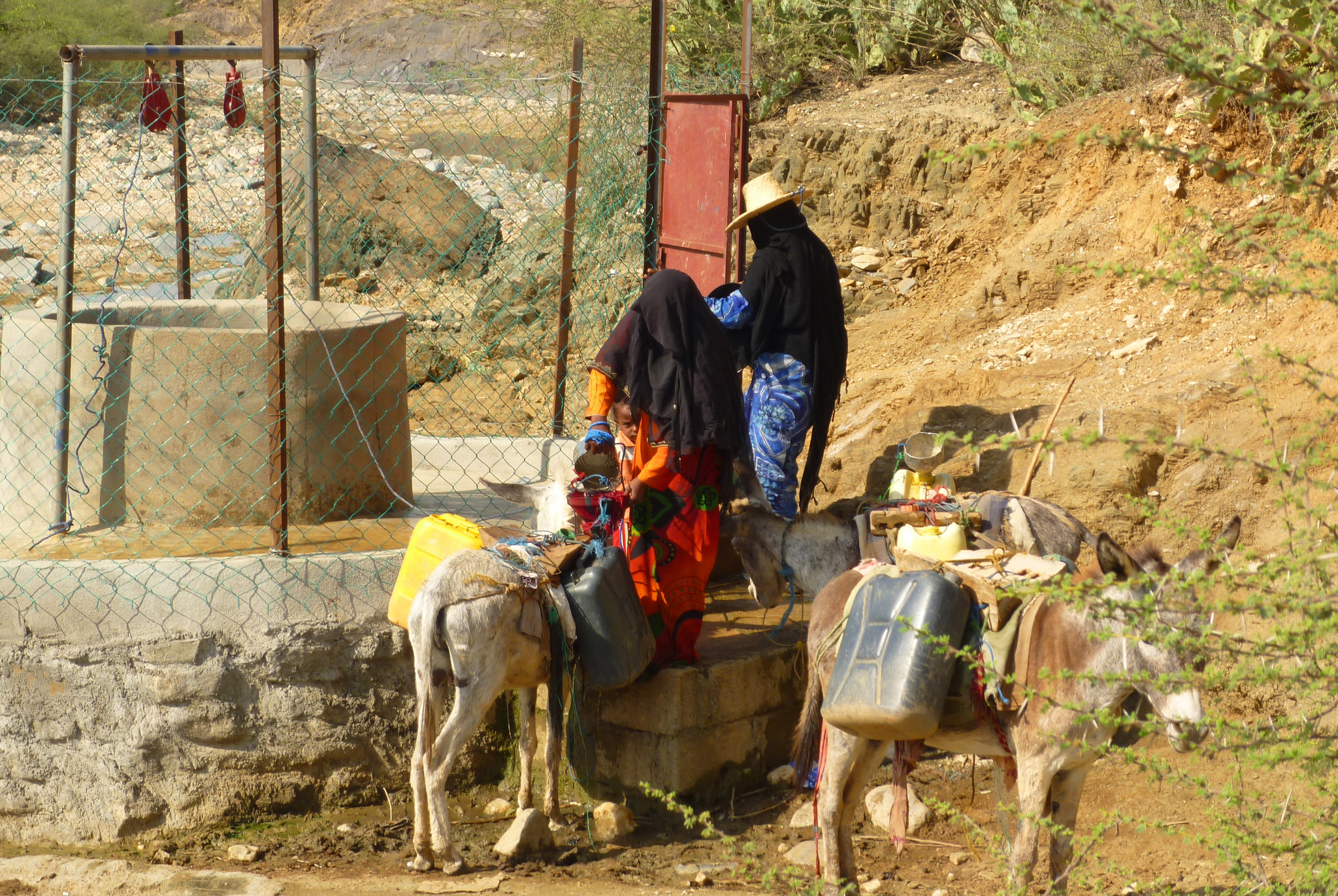 Game-changing water solutions for the Middle East and North Africa