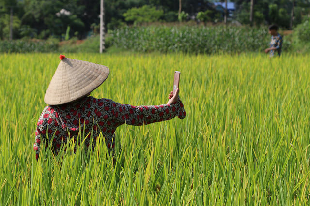 What's in store for Asian smallholder farmers in the Big Data hype?