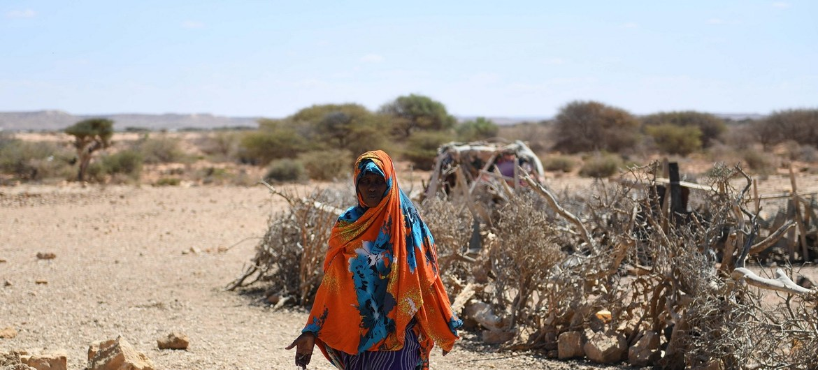 'We are not out of the woods yet' on drought relief efforts, warns top UN aid official in Somalia