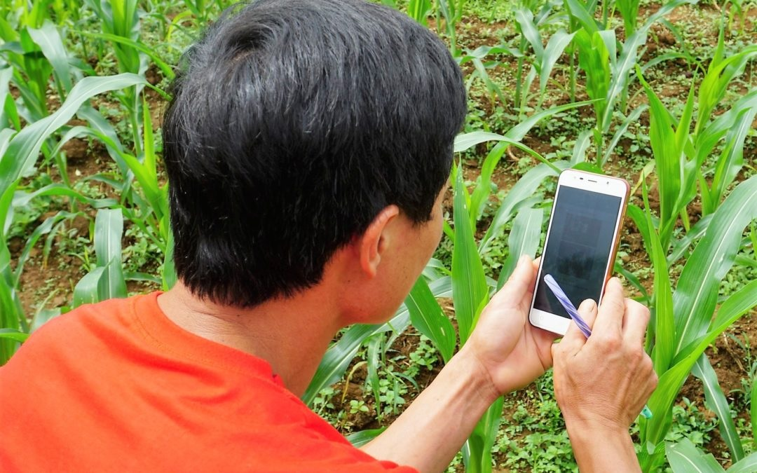 Aligning needs with solutions: Data-driven agricultural innovation for Vietnam's farmers