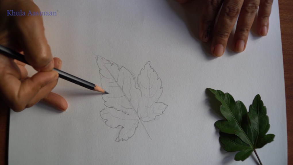 Pencil drawing demonstration - 1