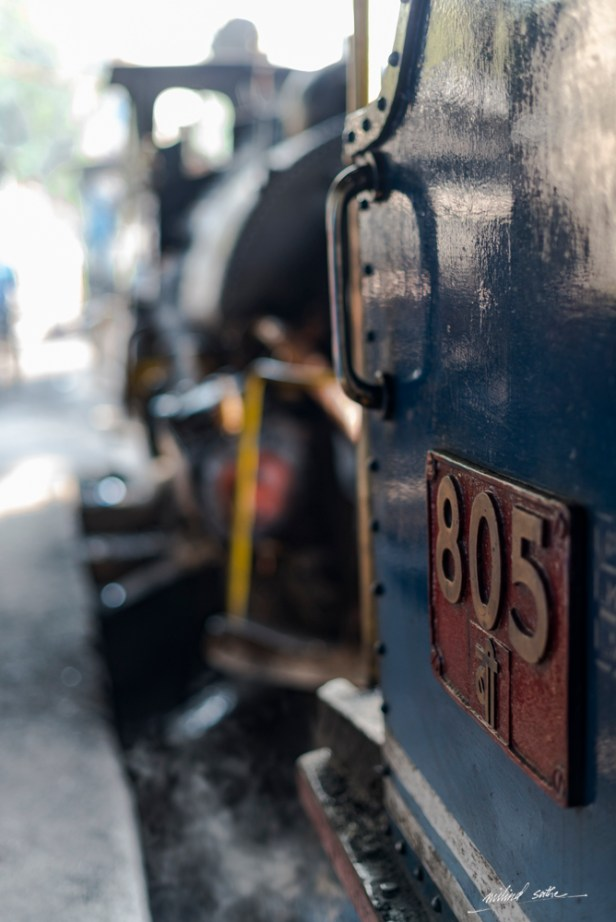 Steam loco 805 at the loco shed of DHR, Darjeeling
