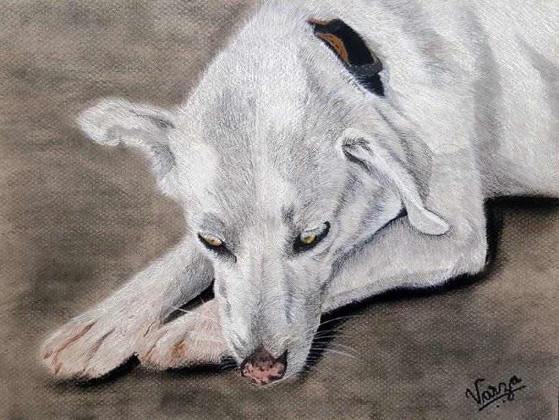 Artwork by Varjavan Dastoor