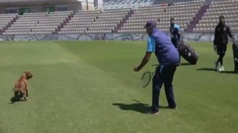 WTC Final: Team India coach Ravi Shastri gives 'fielding classes' to a DOG in Southampton – WATCH   Cricket News