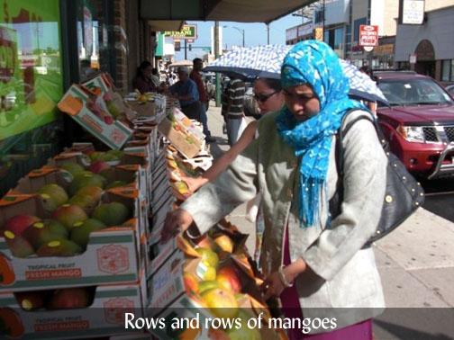 Devon Street and the Mango Lassi Myth