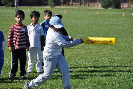 CCA Cricket Festival