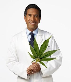 Smoking Marijuana is Okay, says Dr. Sanjay Gupta