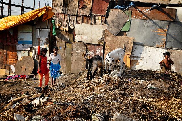 What is a Slum?
