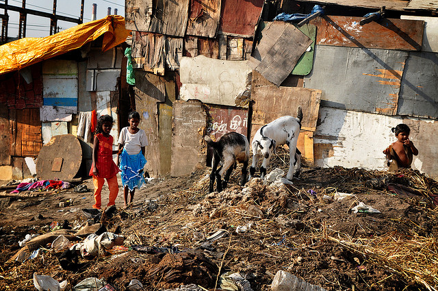 What is a Slum?