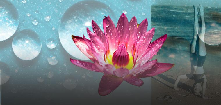 Whitewashing yoga