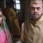 Did Alia Bhatt Meet the Real Raazi?