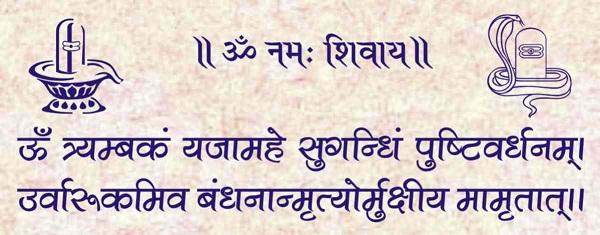 Sri Sadhana Day, Mrityunjaya Japa