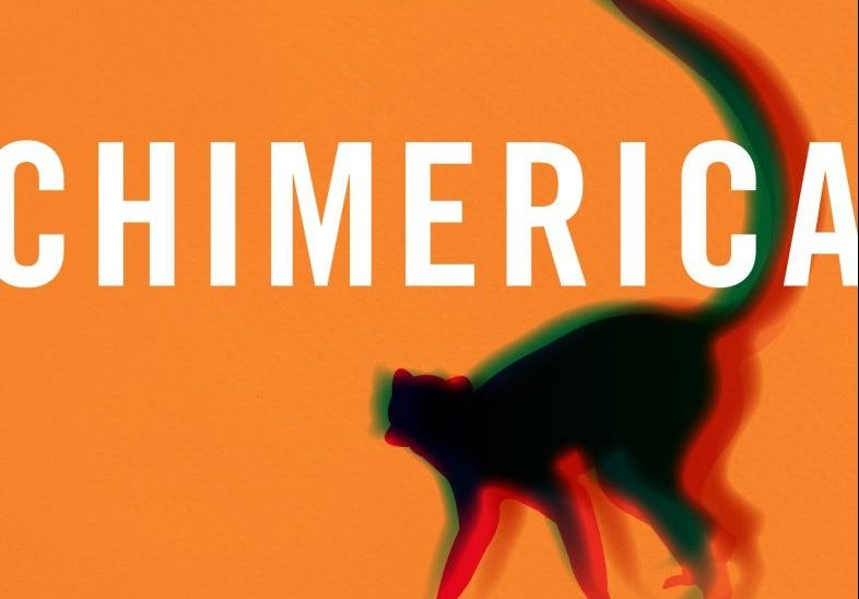 A Desi Lawyer and a Talking Lemur Tackle Patriarchy in Chimerica