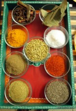 Spices used in Indian cooking