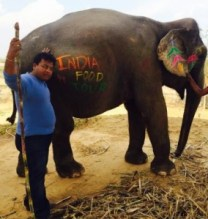 playtime with elephants in Jaipur
