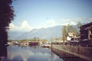 Dal Lake, Srinagar (Jammu and Kashmir, India)