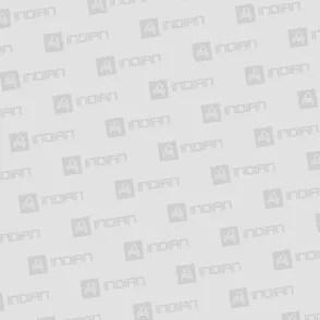 slovakbea-gmail-com