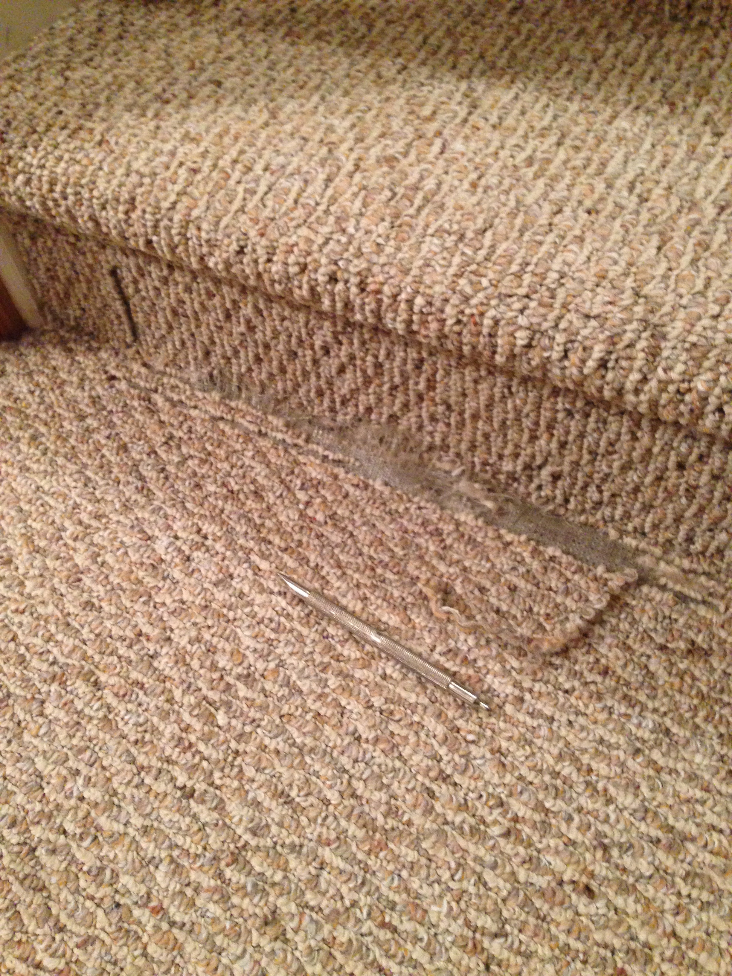 Berber Carpet In Zionsville Seriously Snagged…Icr The Un Snagger | Berber Carpet For Stairs | Decorative | Waterfall Stair | Sophisticated | Durable | Master Bedroom