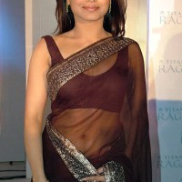Rani Mukherjee sexy cleavage show in low waist see through sari