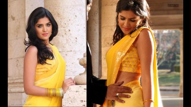 Deeksha Seth_10_Hot saree song