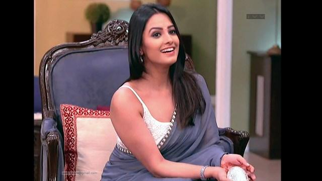 Anita Hassanandani_Hindi TV Actress_05_Transparent Saree Photo