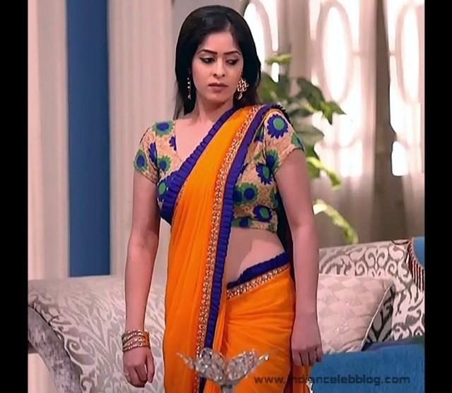 Hindi TV Actress_07_Hot Saree Pics