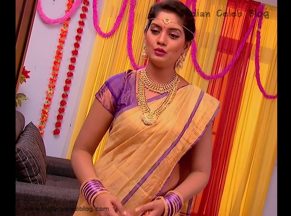 Karuna_Telugu TV Actress_01_Hot Saree Pics