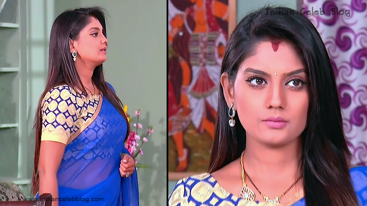 Karuna_Telugu TV Actress_05_Hot Saree Pics