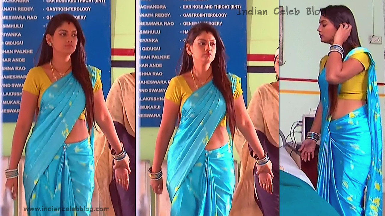 Karuna_Telugu TV Actress_08_Hot Saree Pics