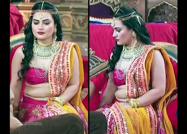 Renee Dhyani_TV Actress_03_Hot navel show pics