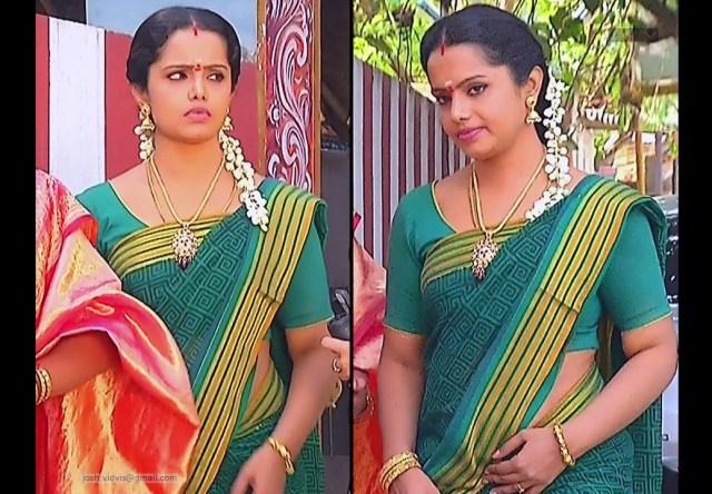 Sudha Tamil Tv Actress Saree Photos Indiancelebblog Com