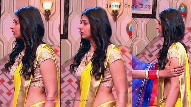 Vidhi Pandya_Hindi TV Actress_02_Hot Saree Pics