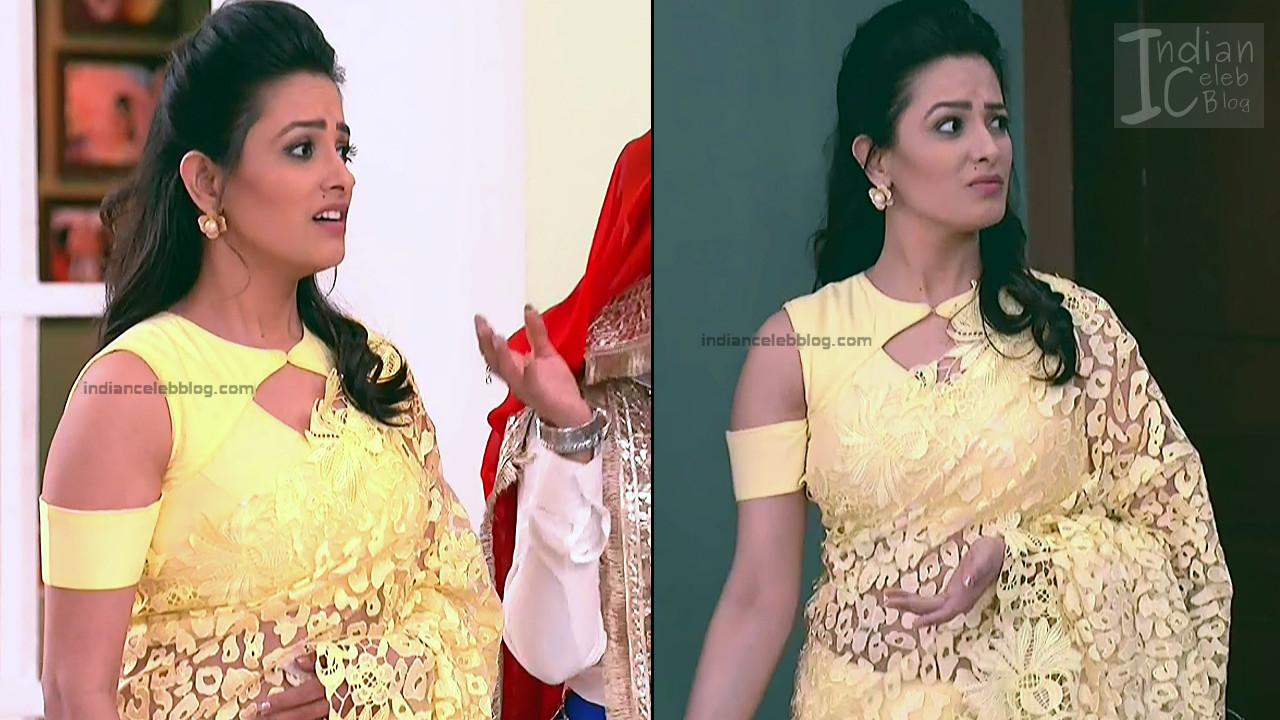 Anita Hassanandani_Hindi TV Actress_17_Hot saree photos