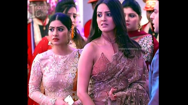 Anita Hassanandani_Hindi TV Actress_5_Hot saree photos