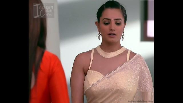 Anita Hassanandani_Hindi TV Actress_8_Hot saree photos