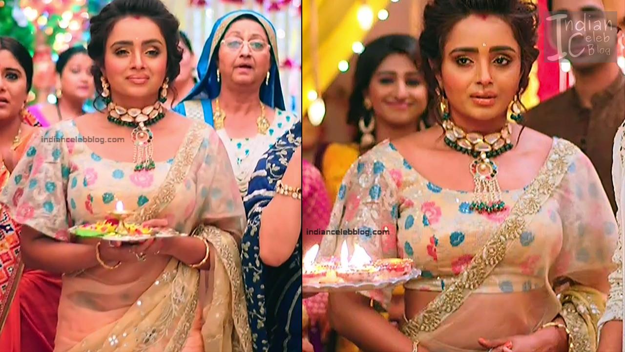 Parul Chauhan_Hindi TV Actress_9_Hot Saree photo