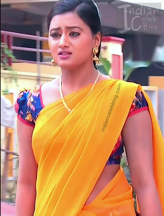 Telugu TV Actress_11_Hot Saree Pic