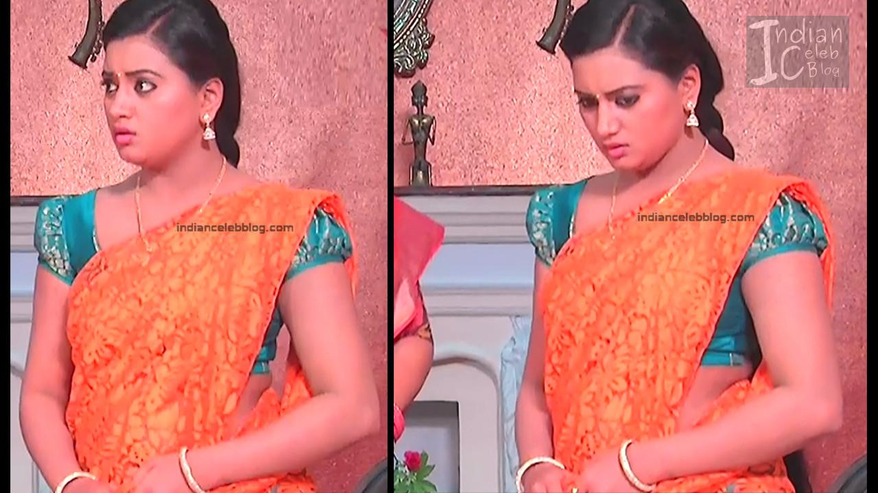 Telugu TV Actress_3_Hot Saree Pic