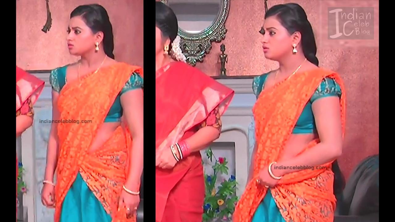 Telugu TV Actress_4_Hot Saree Pic