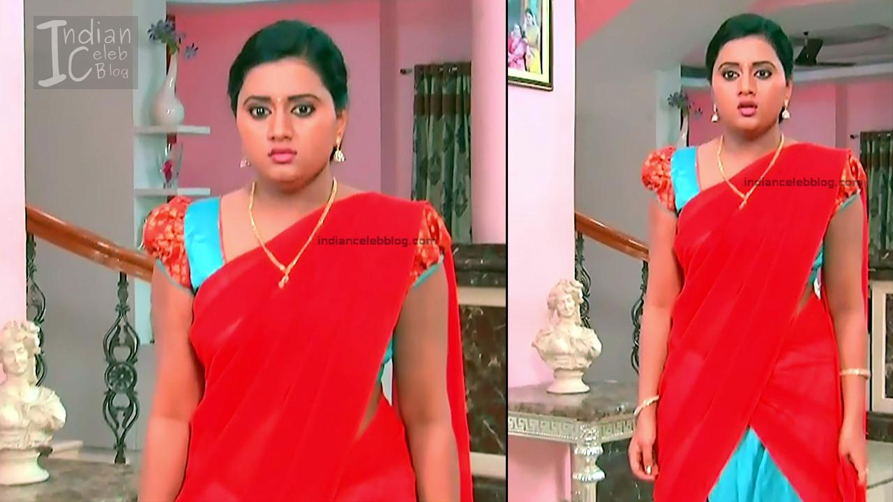 Telugu TV Actress_6_Hot Saree Pic