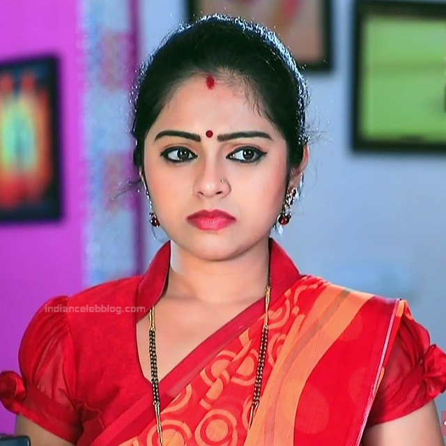 Deepika Dhanya Kannada Serial Kulavadhu S1 14 Saree Pics