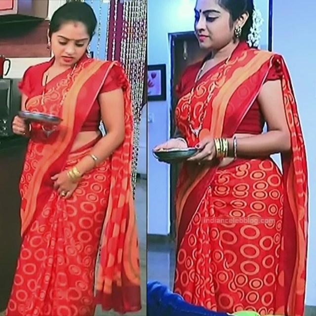 Deepika Dhanya Kannada Serial Kulavadhu S1 15 Saree Pics