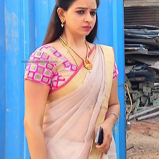 Divya_Tamil TV Actress SMG-S2_3_Saree photo