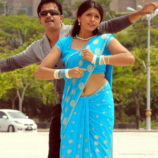 Hema_Tamil Actress_15_Hot Saree Pics