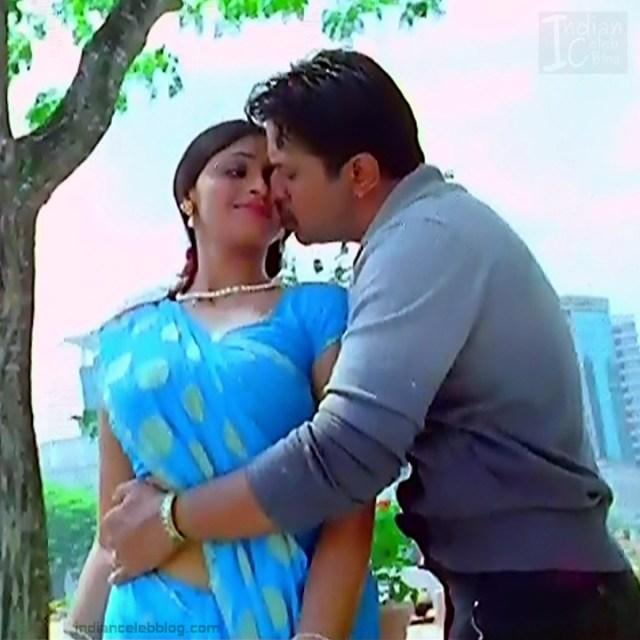 Hema_Tamil Actress_6_Hot Saree Pics