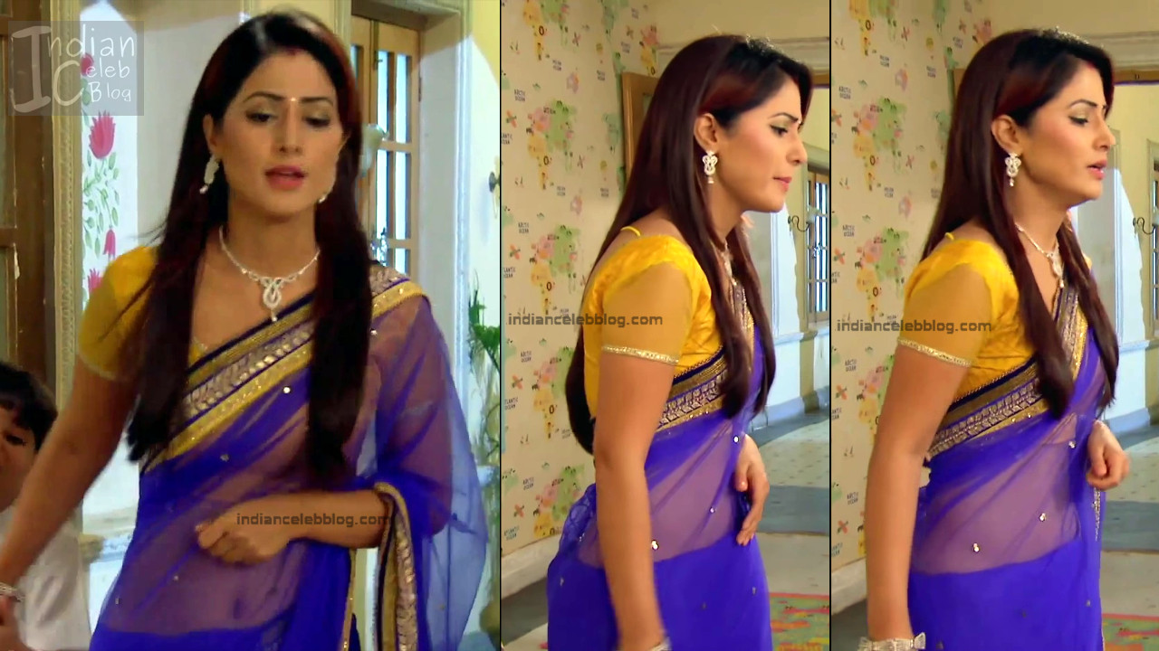 Hina Khan_Hindi TV Actress_16_Hot Sari photos